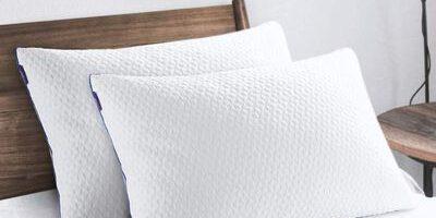 Top 10 Best Memory Foam Pillows in 2021 Reviews